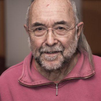 Horst Friedrich Pauli